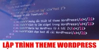 nhung-ham-thuong-dung-trong-lap-trinh-theme-wordpress